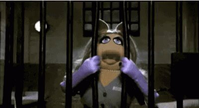The Muppets Miss Piggy GIF