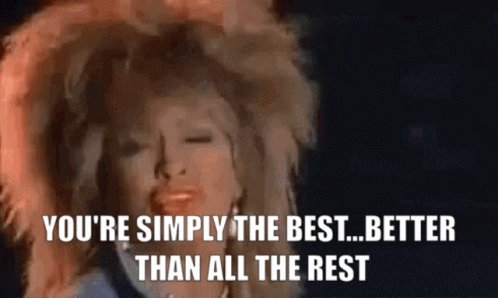 Tina Turner Simply The Best...