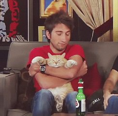 cat hug GIF