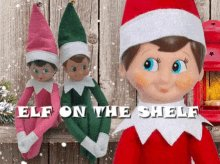 211 days until #Christmas. Have you ever had an Elf on the Shelf in your house? What was his or her name?pic.twitter.com/ROQmCufPJy