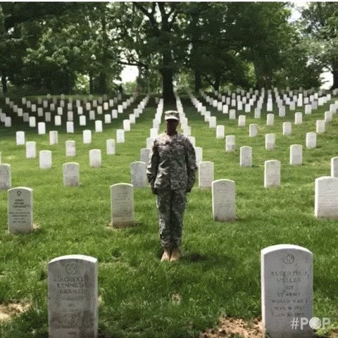 Memorial Day Usa GIF by GoPop