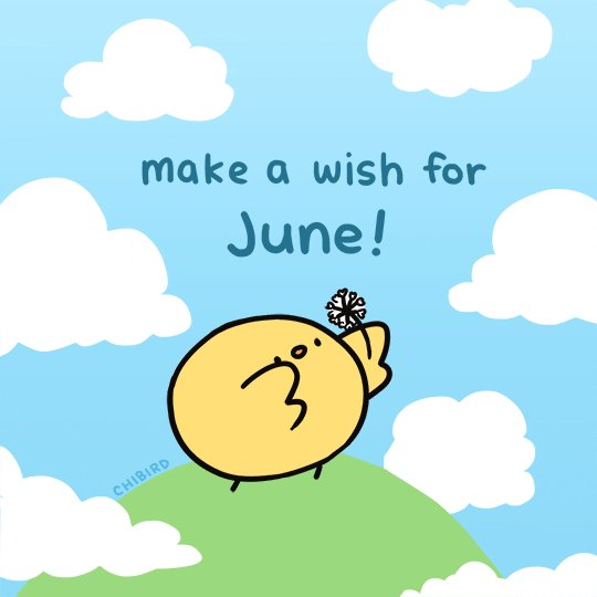 Good morning boys and girls and welcome to June! Let's keep our fingers crossed that this beautiful weather continues #sunshine #JuneWish