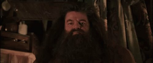 Hagrid Get Out Of My House GIF