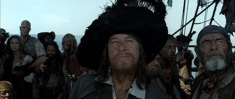 Pirates Of The Caribbean Agree GIF