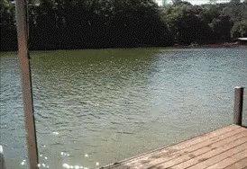 Jump Dock GIF