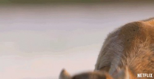 Chewing Our Planet GIF