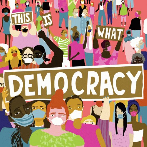 This Is What Democracy Looks Like Vote GIF