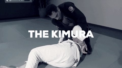 submission bjj GIF by ROYDEAN