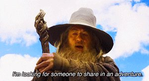 the hobbit im looking for s...