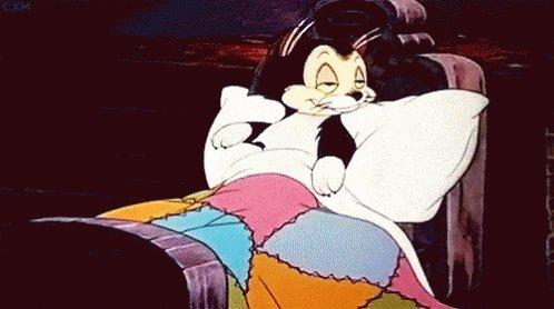 Mit 2.582 Wörtern eine gelungene #Schreibnacht 🥳 Ich schließe mich jetzt der Katze an und gehe schlafen (sofern sie etwas Platz macht 🤷🏻♀️) 😁🥰 Gute Nacht 💤