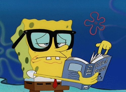 Unimpressed Sea GIF by SpongeBob SquarePants