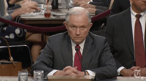 jeff sessions news GIF