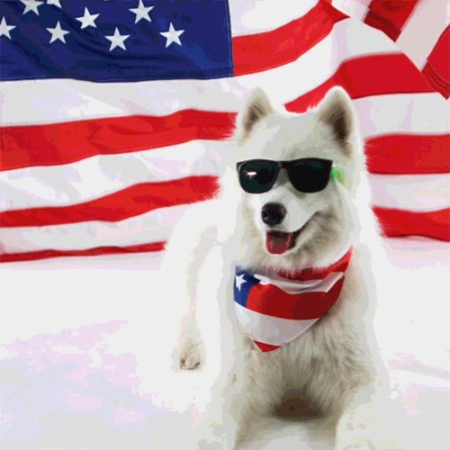 AMERICA IS THE GREATEST NATION ON EARTH. DEAL WITH IT. #HappyFourthOfJuly