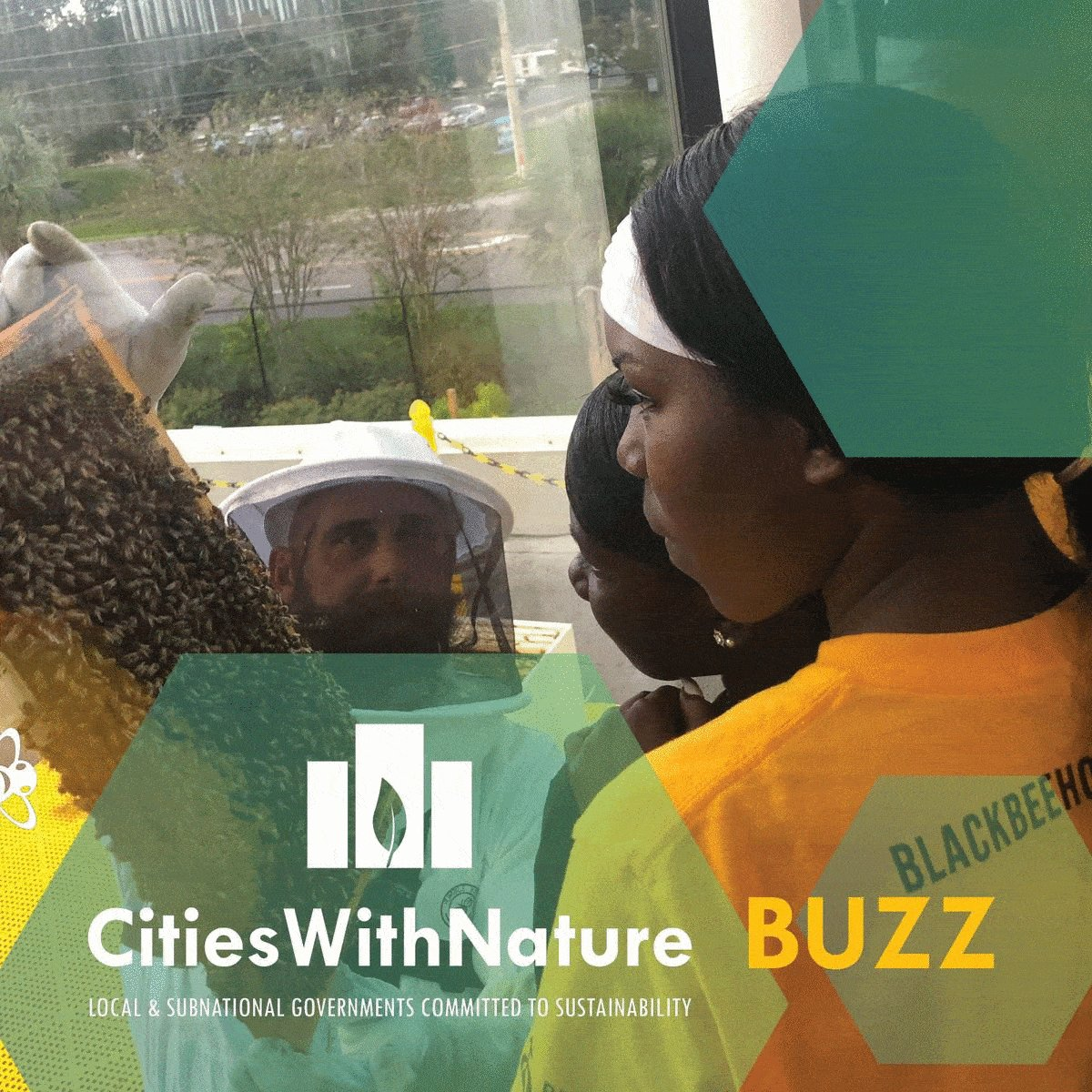 Image for the Tweet beginning: ICYMI: Our #CitiesWithNature BUZZ June