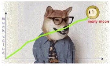 Dog Graph GIF