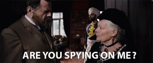 Are You Spying On Me GIF