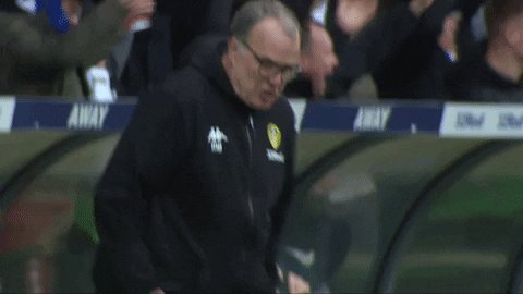🎶 Bielsa he comes from Argentina he came to manage super Leeds, they call him EL loco cos he's crazy but he knows exactly what we need Ben white at the back bamford In the attack Leeds are going to the premier league #lufc #mot