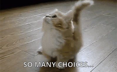 Which One Choices GIF