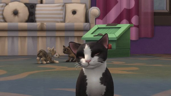 🎉 Happy International Cat Day! 🎉 Show us your sim cats, real cats, or any cats! 😺 #InternationalCatDay #Caturday