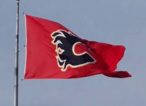 GO FLAMES GO #flames #cofred