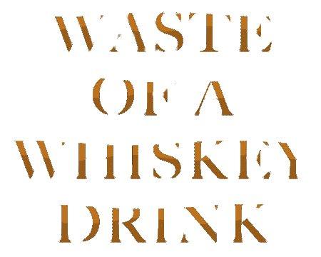 Play #wasteofawhiskeydrink on @AppleMusic to celebrate #NewMusicFriday with us! #garyallanpic.twitter.com/YPhhM9X7j7