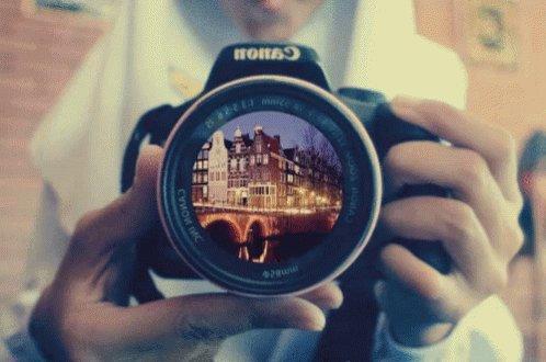 Followme and check my profile  #_creative_photo #photograph #photoshoot #photography #vijaykajal33 https://t.co/fz7QcZEE1W