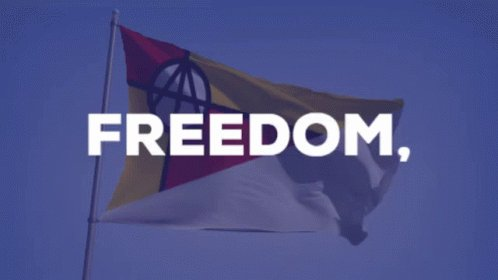 Democracy Freedom GIF