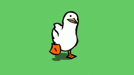 Duck Quack GIF