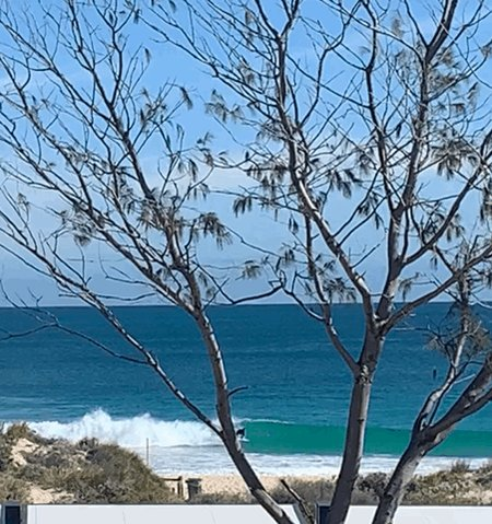 RT @chriskiwisup: Winter swell at the local 🤙 #perth #justanotherdayinwa #scarborough https://t.co/Ll5NN69lnT