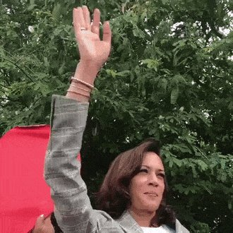 """""""Phony Kamala."""" How clever.  Bless their hearts. #MAGA https://t.co/Z2qUxcklYp"""