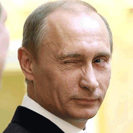vladimir putin russia GIF