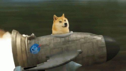 Doge With Rocket GIF