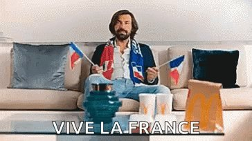 France World Cup GIF