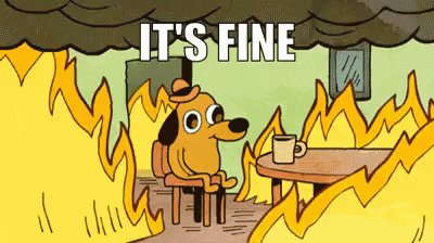 Everything Is Fine GIF by memecandy