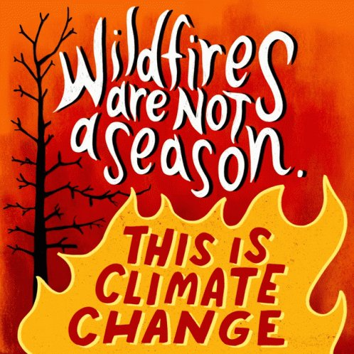 Wildfires Are Not ASeason California Wildfire GIF