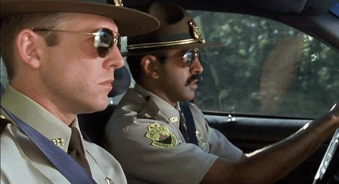 Super Troopers Police GIF