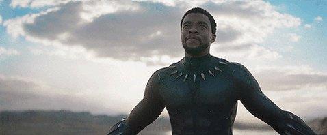 Black Panther Movie GIF