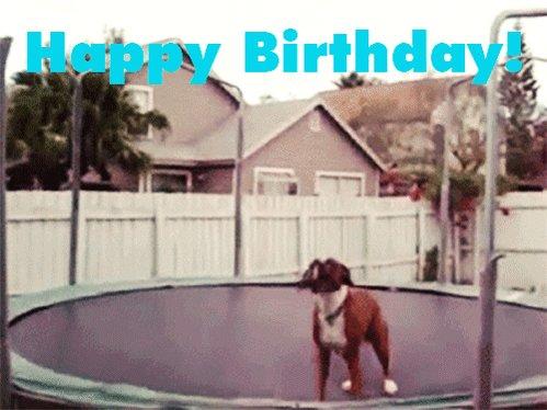 Happy Birthday I hope you have a great birthday