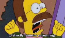 The Simpsons Ned Flanders GIF