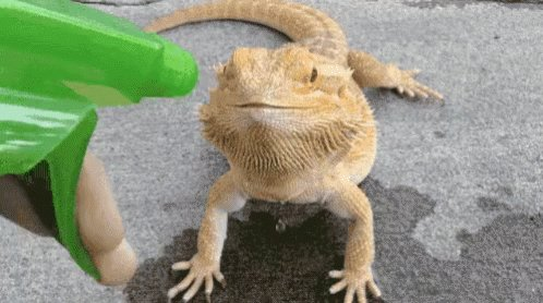 Feed Ur Thirst! GIF