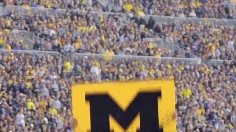 Ann Arbor Football GIF by U...