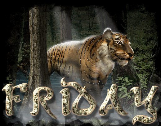 TigerLawUK photo