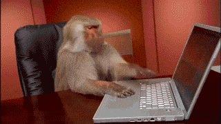 Computer Working GIF
