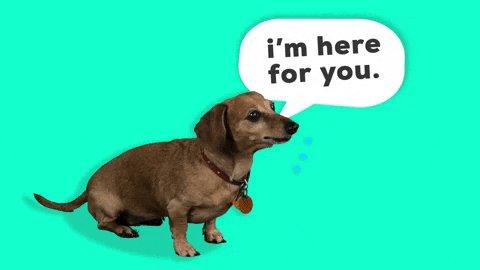Wiener Dog Listening GIF by Originals