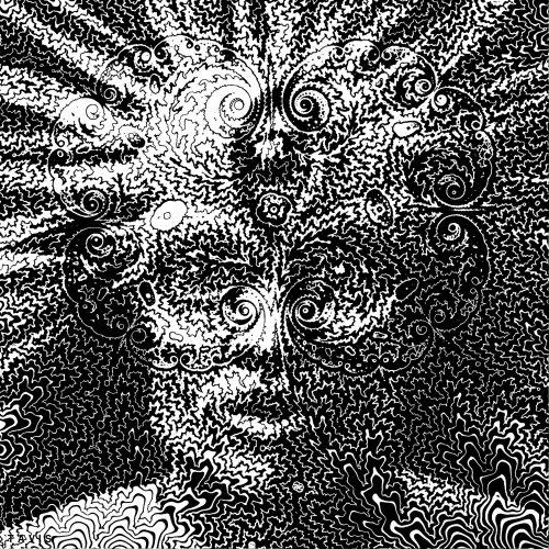 black and white optical illusion GIF