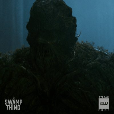 #DCSwampThing is on the loose. A new episode starts NOW! https://t.co/6Es32qzCCY