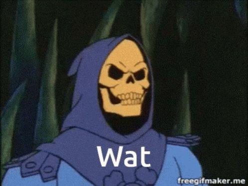 Skeletor Wat GIF