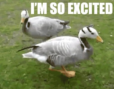 My wife is taking her first dose of hrt this morning, Im so happy for her. Shes been waiting for this for so long.