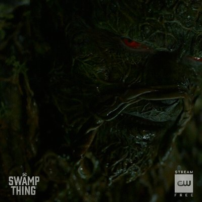 He remembers. A new episode of  #DCSwampThing starts NOW! https://t.co/yNioNFaAkh