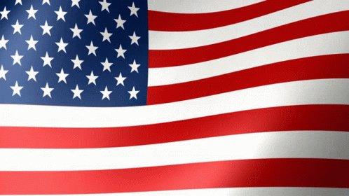 Usa Us Flag GIF